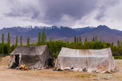 Expedice_Ladakh_12