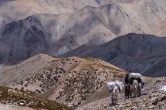 Expedice_Ladakh_22